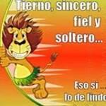 Armando Quito profile picture