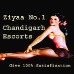 Ziyaa Khan Profile Picture