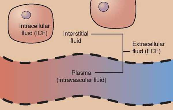 What is Intracellular Fluid?