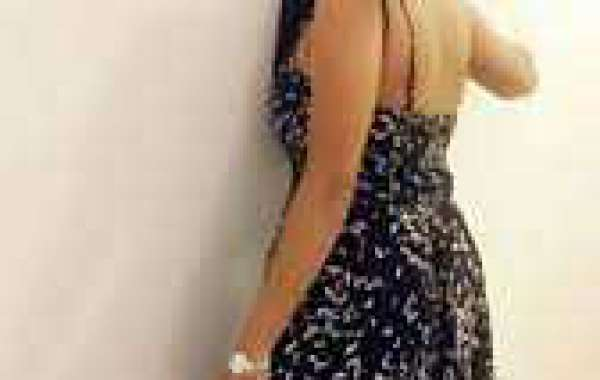 Udaipur Escorts Service give lodgings